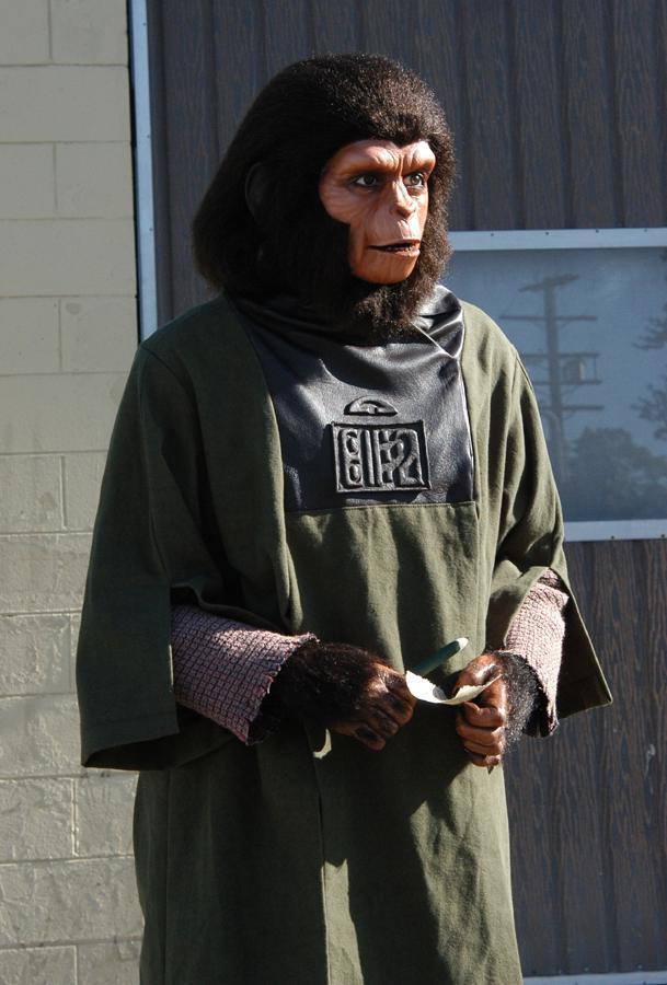 Dr Zira Display Mannequin